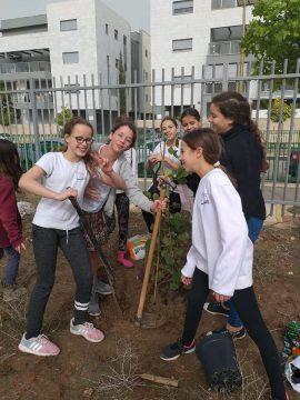 תופעת החינוך המשותף לדתיים וחילוניים ההולכת ומתפתחת –בבואה לתהליכים שמתרחשים בחברה הישראלית